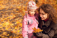 Woman with daughter and collect maple leaves Royalty Free Stock Photos