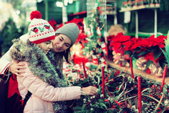 Woman with daughter looking at floral decoration at Cristmas fai. American women with daughter looking at floral decoration at Cristmas fair Stock Photography