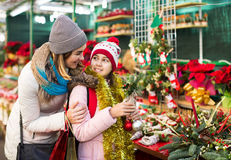 Woman with daughter looking at floral decoration at Cristmas fai. Positive american women with daughter looking at floral decoration at Cristmas fair Stock Photography