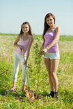 Woman and daughter planting tree. Woman and her teen daughter planting tree Stock Images