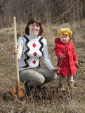 Woman with   daughter sets tree Stock Images