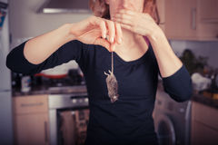 Woman with dead mouse in kitchen Stock Photos
