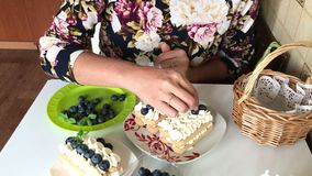 A woman decorates a cake with blueberries. Layers of savoiardi cookies and cream layers are decorated with blueberries and mint