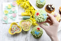 Woman decorates easter cupcakes Royalty Free Stock Images