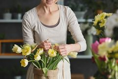 Woman decorating bouquet of tulips Royalty Free Stock Photo