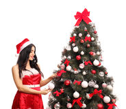 Woman decorating a Christmas tree. Beautiful young woman in Santa costume decorating a Christmas tree isolated on white background Stock Images