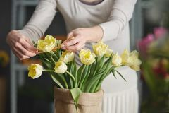 Woman decorating tulips Royalty Free Stock Photos