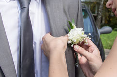 Woman decoration groom jacket Stock Photos