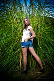 Woman in denim shorts posing against high grass Royalty Free Stock Photography