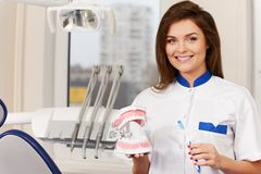 Woman dentist with plastic jaw Royalty Free Stock Images