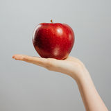 Woman on diet with an apple in the hand against gray background Royalty Free Stock Image