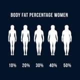 Body fat percentage women stock illustration