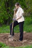 Woman digging in the garden Stock Photos