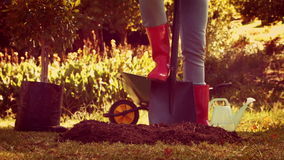 Woman digging soil for gardening stock video footage