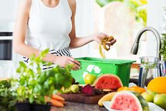 Woman disposing of leftovers royalty free stock photo