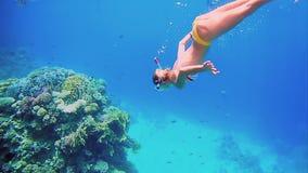 Woman dive underwater in snorkeling diving mask stock video