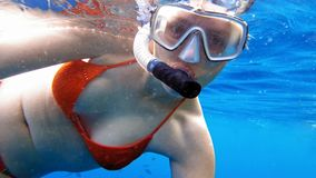 Woman dive underwater in snorkeling diving mask Stock Photography