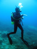 Woman diver. A woman diver under water Royalty Free Stock Image