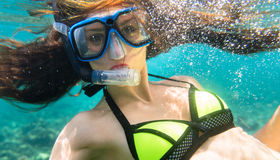 Woman diving or snorkelling in ocean stock images
