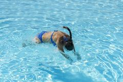 Woman diving in the swimming pool. Young beautiful girl swimming in pool. Brunette relaxing in clear warm water on sunny day. Top. View Close up Slow motion royalty free stock images