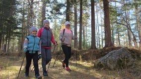 Woman do die Nordic in aard lopen Meisjes en kinderen de stokken van de gebruikstrekking en noordse polen, rugzakken familiereize stock videobeelden