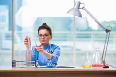 The woman doctor doing chemical tests in laboratory Royalty Free Stock Photo