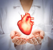 Woman doctor showing heart Stock Photography