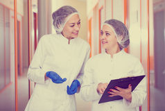 Woman doctors talking about beauty procedures Stock Photos