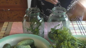 The woman does house preparations of cucumbers stock video footage
