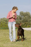 Woman and dog Stock Images