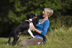 Woman with dog. Young woman playing with border collie dog outdoor Stock Image