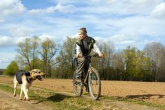 Woman with dog. Woman at bicycle with alsatian dog Stock Images