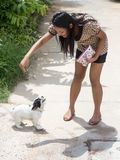 Woman with dog. Young woman playing with dog royalty free stock photos