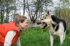 Woman with dog. Woman with alsatian dog making faces to each other Stock Image