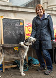 Woman with dog at Anti UKIP stall in Thanet South. Woman posing with a dog at an Anti UKIP and Farage stall in Ramsgate, Thanet South during the General Election Royalty Free Stock Photo