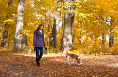 Woman with dog in autumn park Stock Images