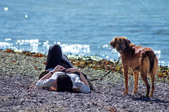 Woman and a dog on the beach Royalty Free Stock Photography