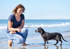 Woman and dog on the beach. Woman and dog playing on the beach Royalty Free Stock Images