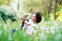 Woman with dog. Woman beautiful young happy with dark hair in striped sweater holding small dog Jack Russell Terrier Royalty Free Stock Photo