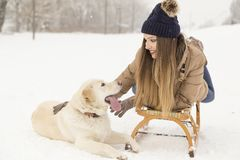 Woman and a dog Royalty Free Stock Images