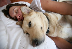 Woman and dog and bed Stock Images
