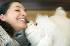 Woman with dog Bichon Frise. Stock Photography