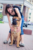 Woman and dog bullmastiff Royalty Free Stock Photo