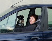 Woman and dog in car Stock Photos