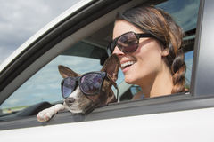 Woman and dog in car on summer travel. A Woman and dog in car on summer travel Royalty Free Stock Photo