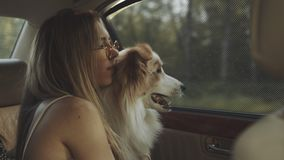 Woman and dog in car on summer travel