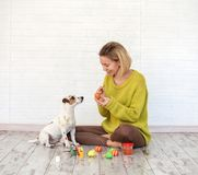 Woman and dog color Easter eggs Royalty Free Stock Image