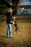 Woman with Dog Doing Tricks Royalty Free Stock Photography
