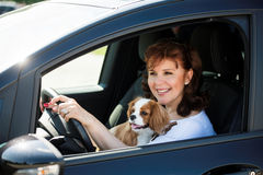 Woman and dog driving car Royalty Free Stock Photos