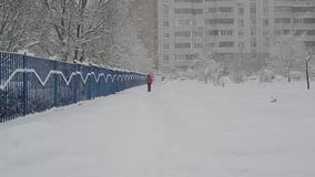 Woman with a dog go along fence in snowstorm in Moscow, Russia. Woman with a dog go along a fence in snowstorm in Moscow, Russia stock video footage